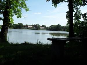 2011_Raitzhainer_Teich